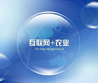 这一个十年是互联网向农业渗透的十年